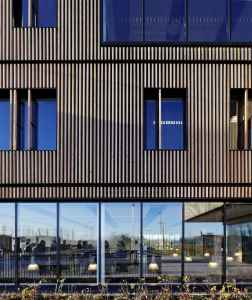 Vertical cladding, Siberian Larch