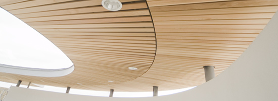 External Ceilings External Timber Cladding Acoustic Wood